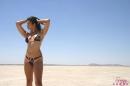 Black Bikini Desert picture 2